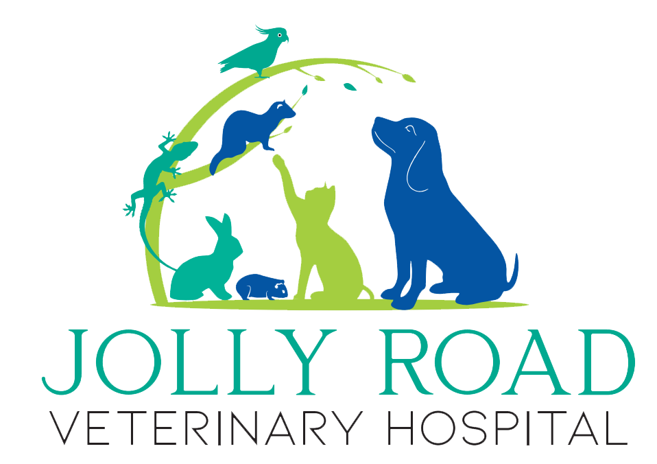 Jolly Road Veterinary Hospital